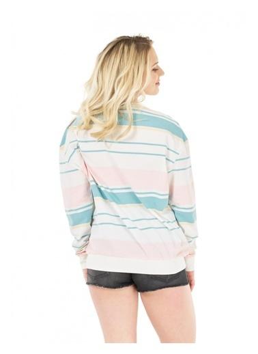 Picture Organic Sweatshirt Renkli